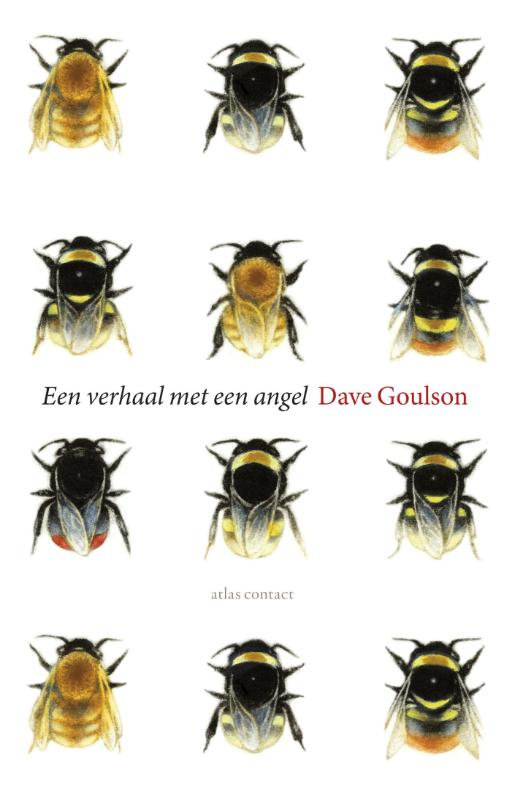 Een verhaal met een angel Dave Goulson.indd